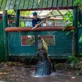 Marineland Melanesia