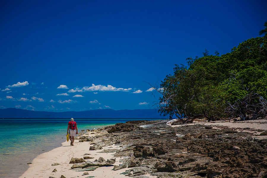 Eco Island Walk on Green Island